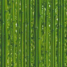 Ταπετσαρία Τοίχου Dekora Nature 6 959361