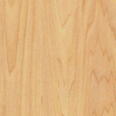 Αθλητικό Δάπεδο Gerflor Taraflex Sport M Dry-Tex 6381 Oak 9mm