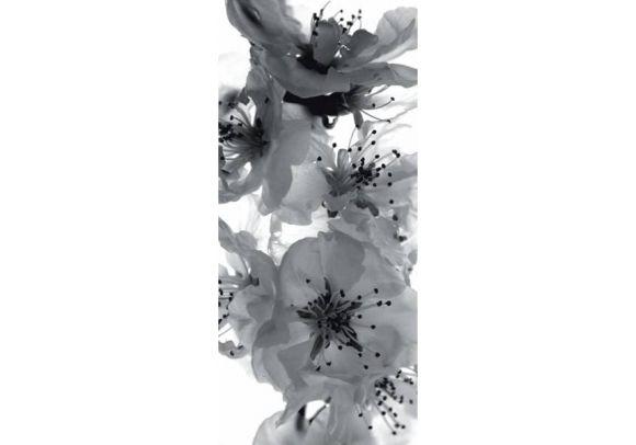 Φωτοταπετσαρία Πόρτας white orchids